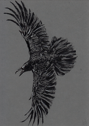 A5 size raven on grey card #8