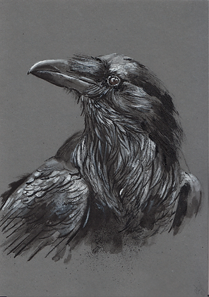 A5 size raven on grey card #7