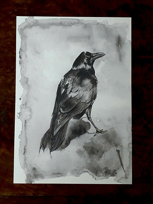 PRINT: Raven A3. 29.7 x 42 cm (11.7 x 16.5 inches)