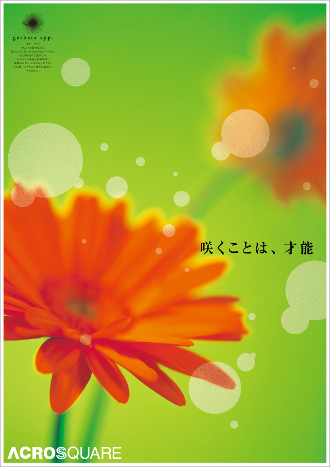 acros_01_posterSpring.jpg