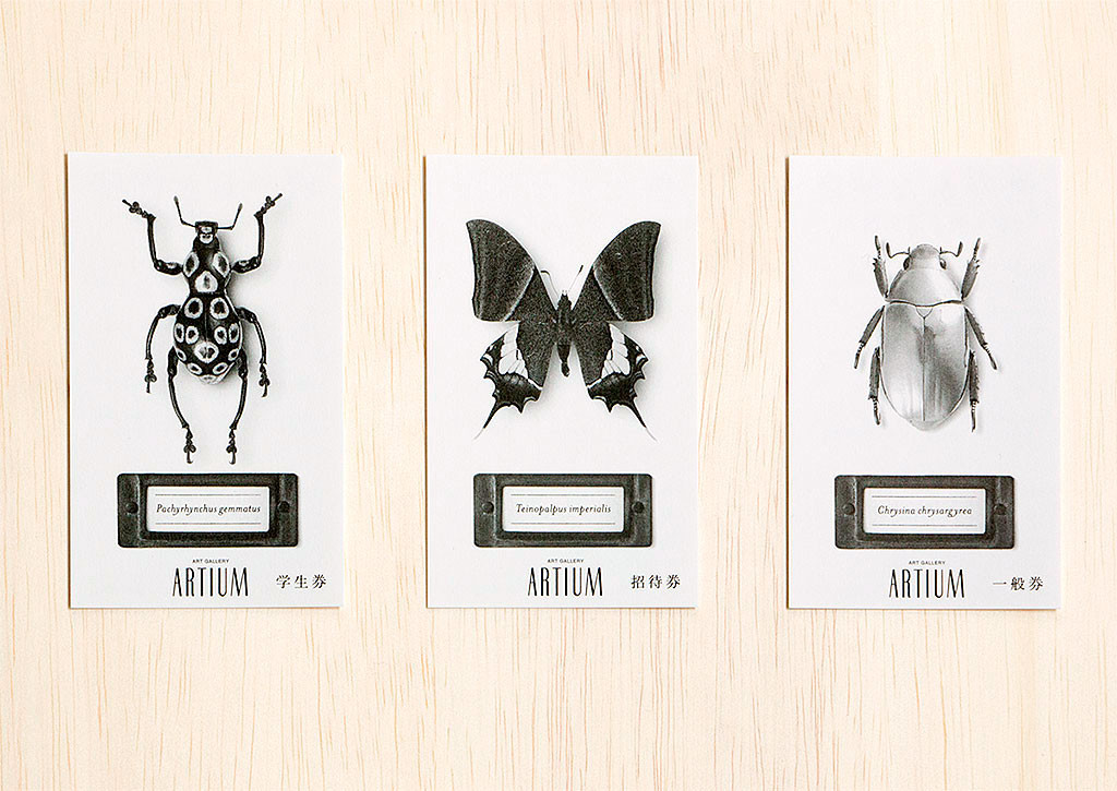 密やかな部屋-きらめく昆虫標本- チケット
