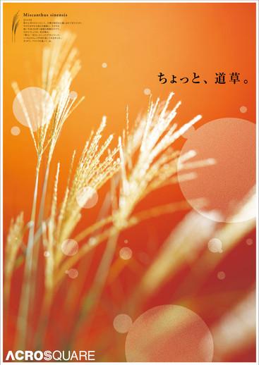 acros_02_posterAutumn.jpg