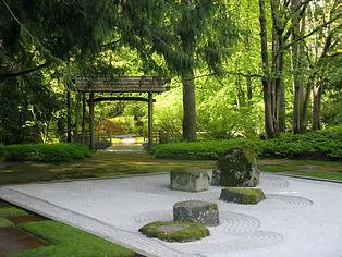 A zen garden