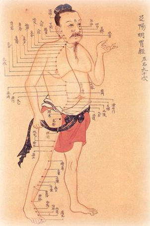 A vintage poster pointing out the location of acupuncture points