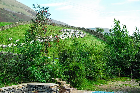 Howgills Barn Country Location.jpg