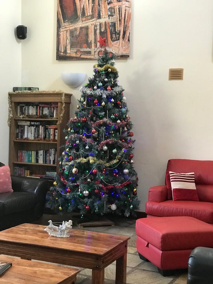 Christmas Tree at Howgills Barn