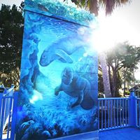 Take a selfie year round with these life sized manatees on our chimney!