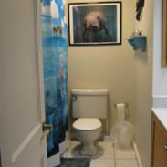 Manatee Room Bathroom
