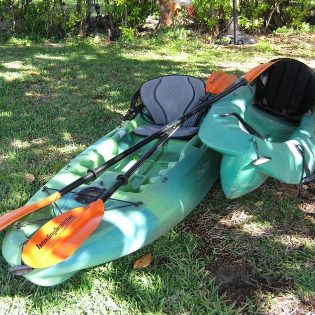 Kayaking, anyone?