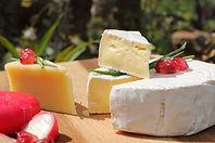 cheese-2829034_1280.jpg