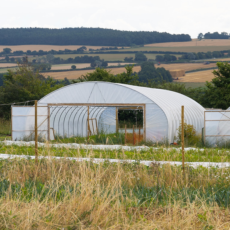 Market Gardening: From Soil to Sales