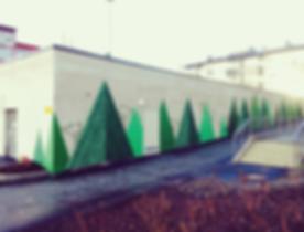 Mannisto_kuva_1.png