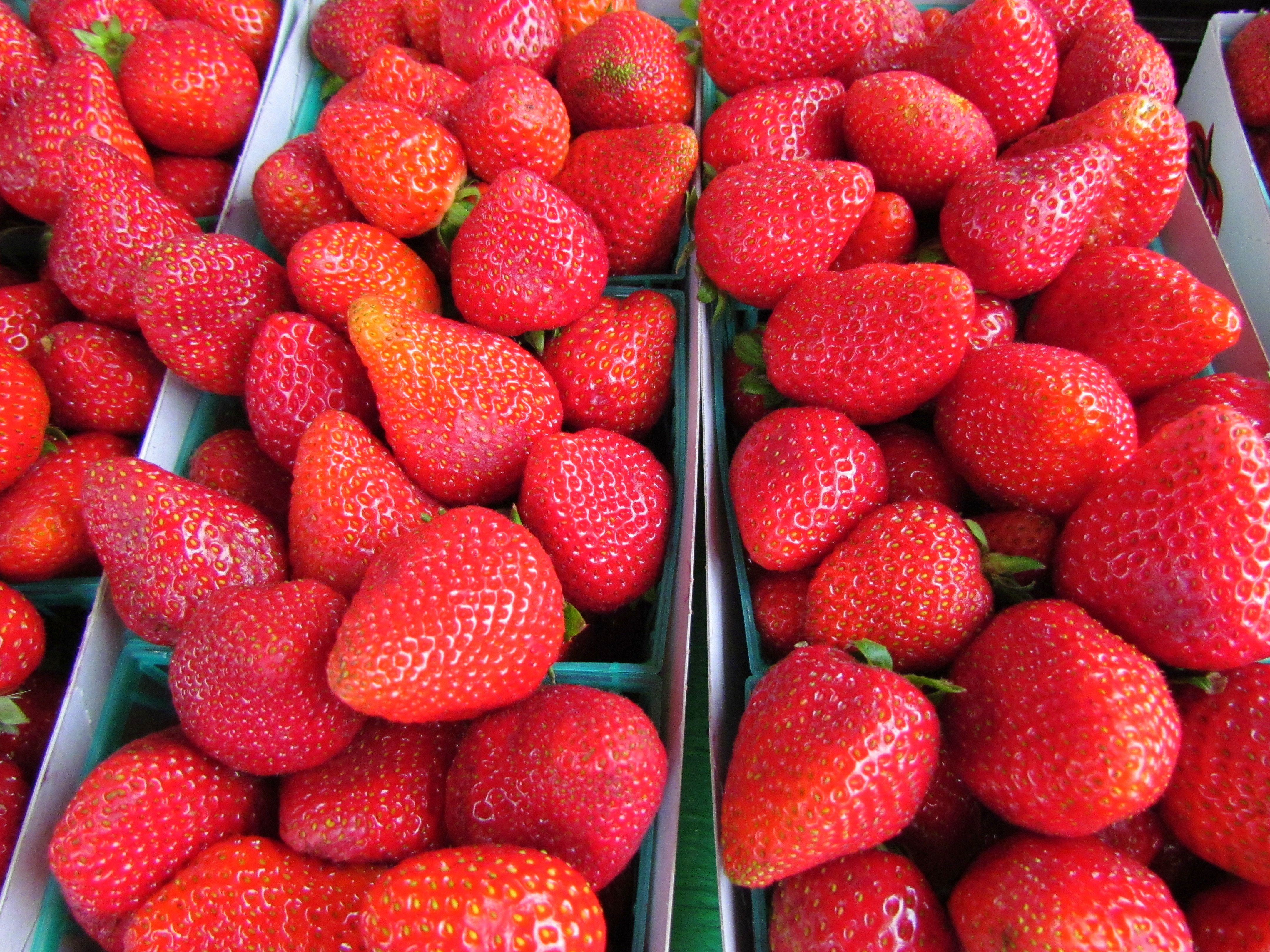 Strawberries grown here in Sonoma