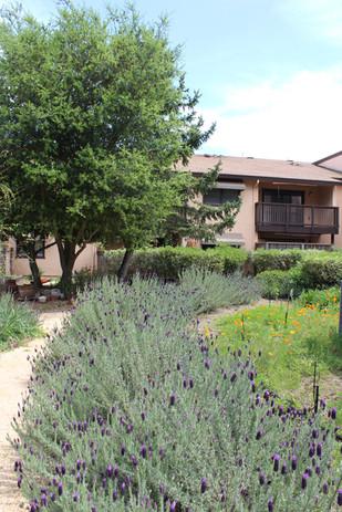 FAHA Manor walking trail