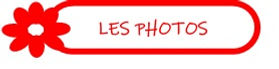KT les photos.jpg