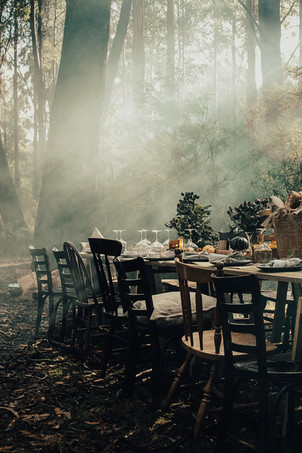 Styled Dinner in the Forest 2018