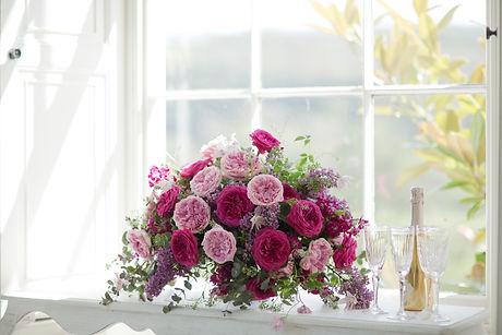 David Austin Roses-454.jpg