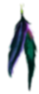 feather-1.png