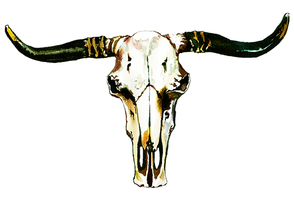 scull.png