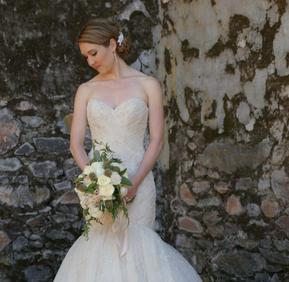Vineyard Bride
