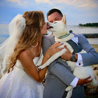 Puppy kisses for the Bride