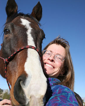 MerriMeldeStormy - The Equestrian Vagabo