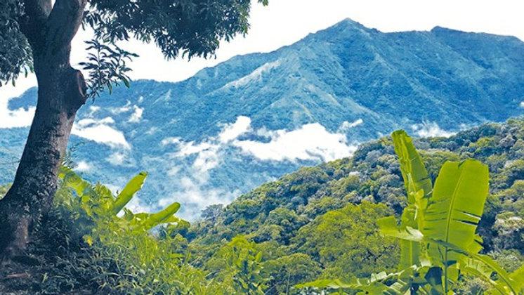COLOMBIE Sierra Nevada