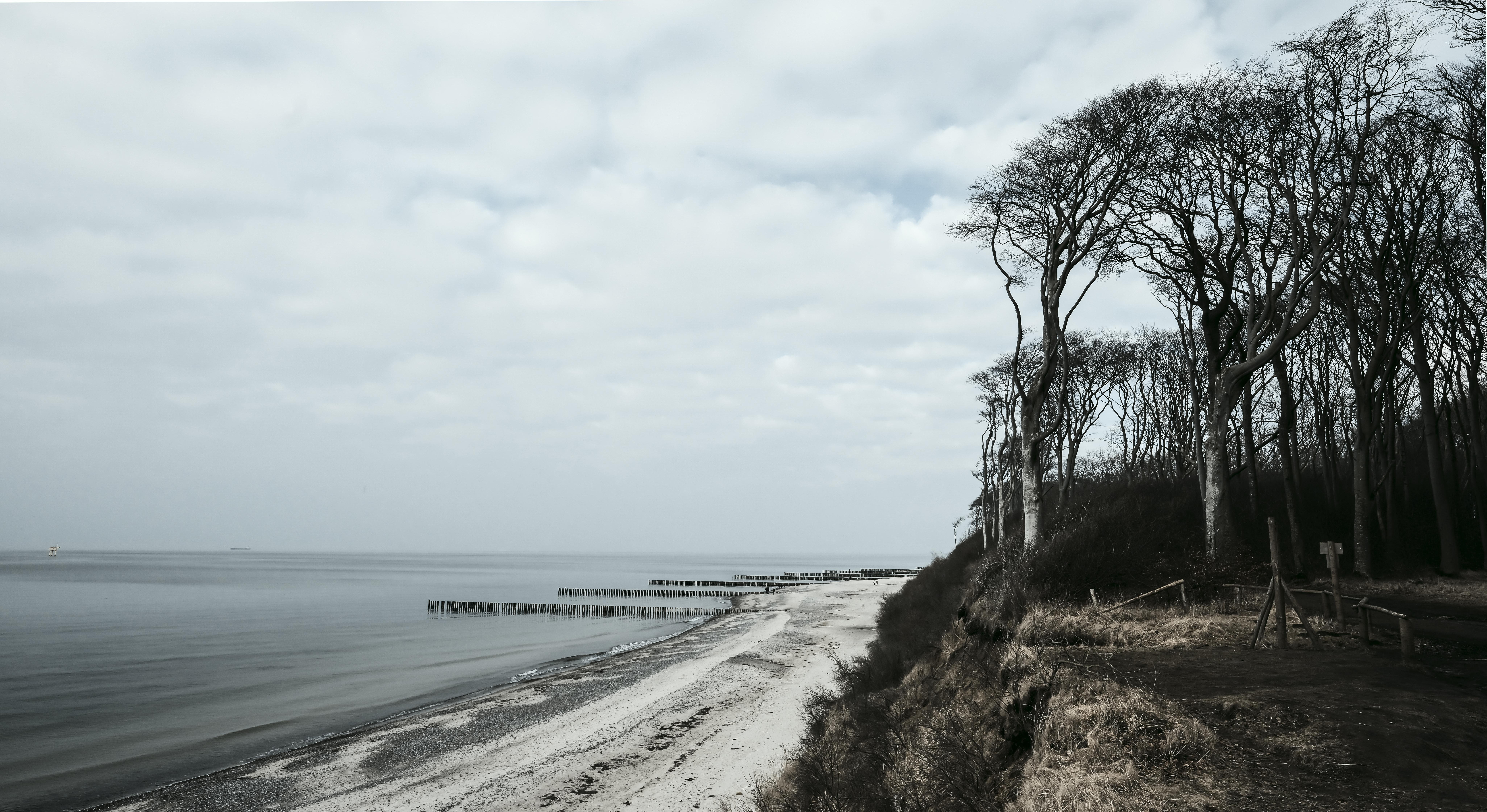 Gespensterwald/ Nienhagen