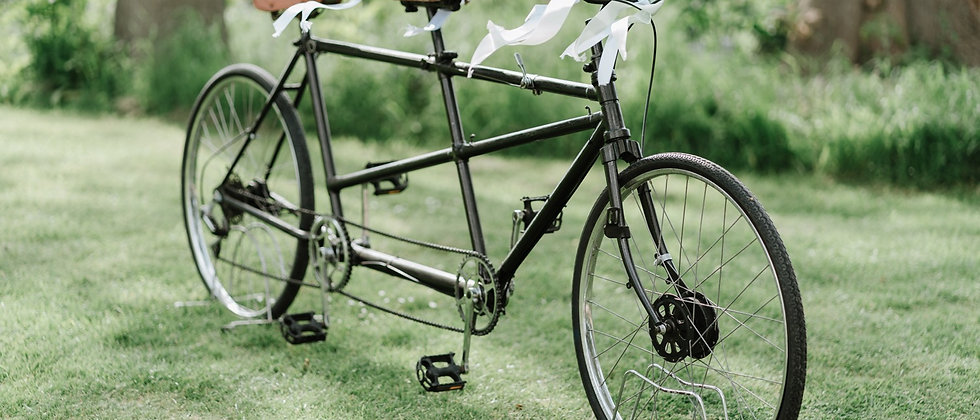 """""""HORACE"""" THE TANDEM"""