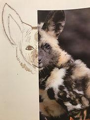 animals 14.jpg