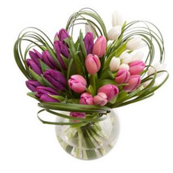 Tulips in fish bowl $120