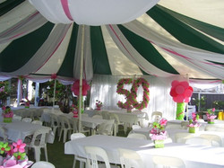 Canopy with Ribbon.jpg