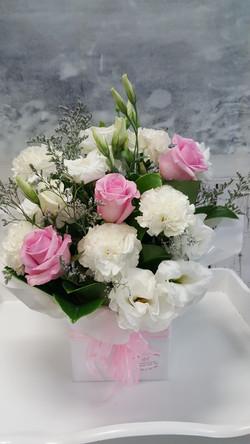Pink & White $45