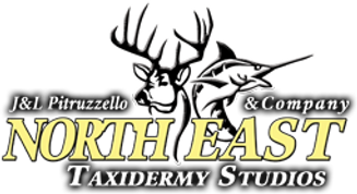 north-east-taxidermy-logo.png