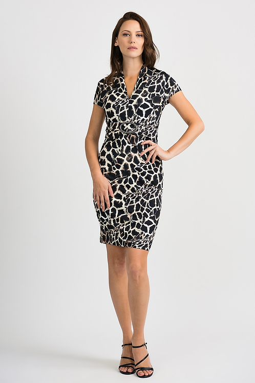 Smart Print Dress