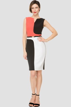 J R shift dress with panel design front.