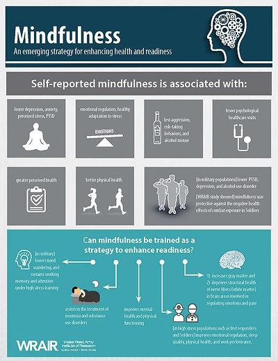 Mindfulness Benefits Literature Review_P