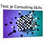 """Consulting Skills. """"Ik kan het iedereen aanraden"""""""