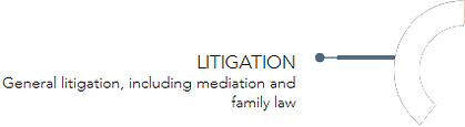 Litigation_Segment_Stalk.png