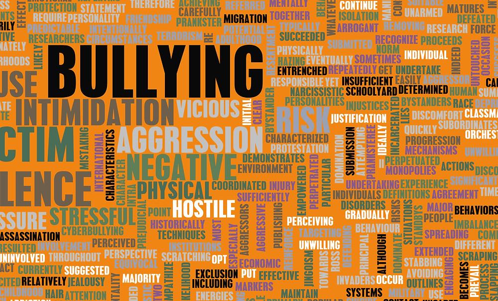 bully wordcloud