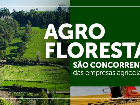 Agroflorestas são concorrentes das empresas agrícolas?