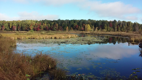 Three Eagle Trail - Clearwater Lake, WI