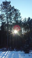 Sun Screen - Land O' Lakes, WI