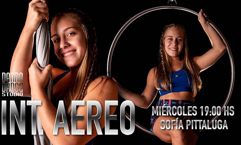 INTEGRAL AEREO Tela y Aro / MIÉRCOLES 19:00 hs (15+)