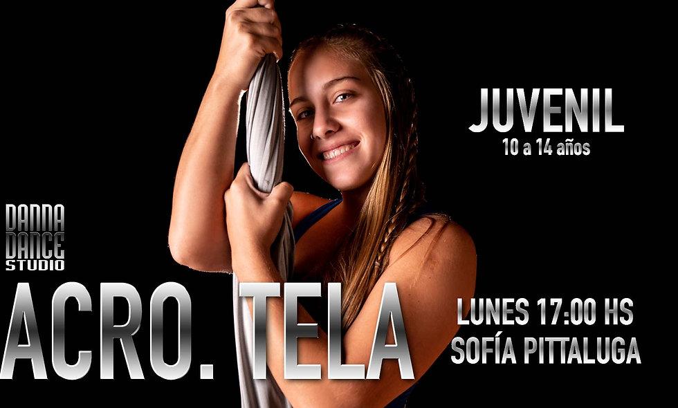 ACRO. TELA Juvenil (10 a 14 años) / LUNES 17:00 hs