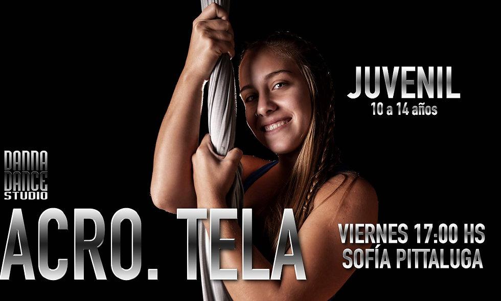 ACRO. TELA Juvenil (10 a 14 años) / VIERNES 17:00 hs