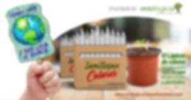 caja de colores 2.jpg