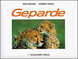 norbert-rosing-geparde.jpg