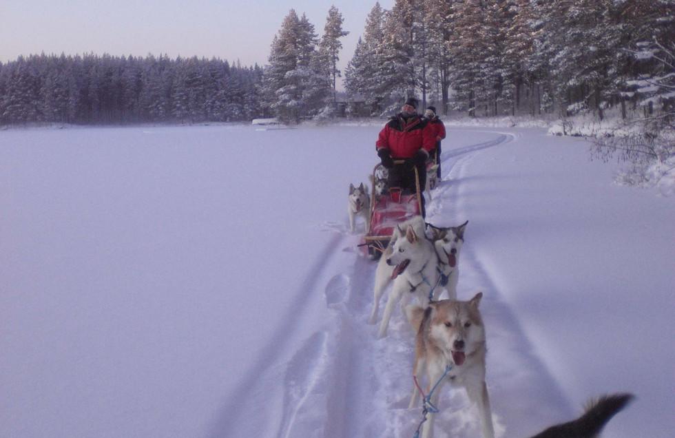2010_Januar_Finnland_117.jpg