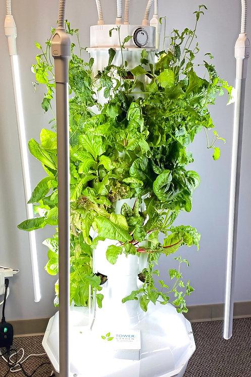 Vertical Aeroponic Garden System
